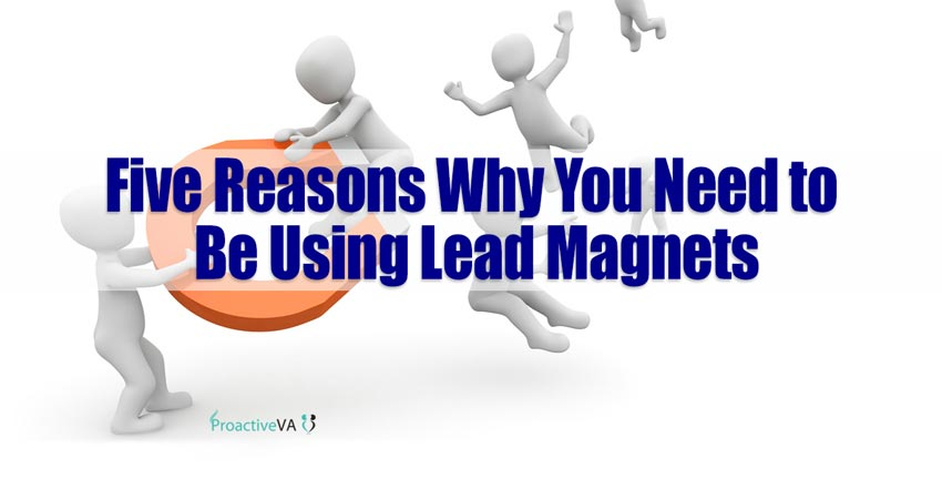 Five Reasons Why You Need to Be Using Lead Magnets